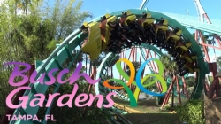 6-7th Grade Busch Gardens Information and Online Payment